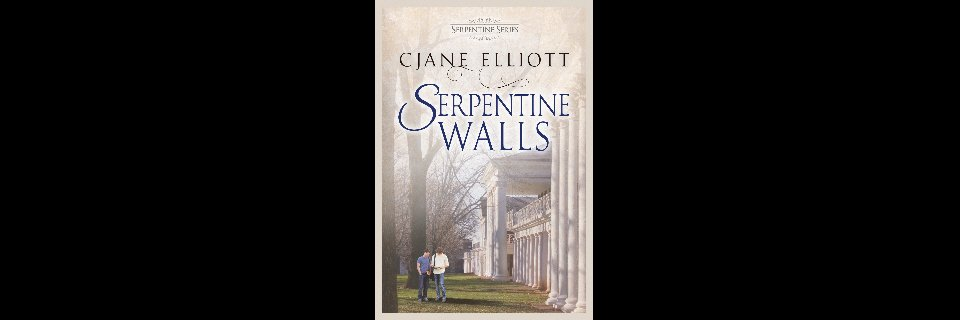 Serpentine Walls Paperback & eBook