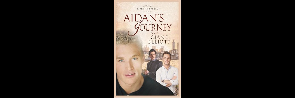 Aidan's Journey Paperback & eBook